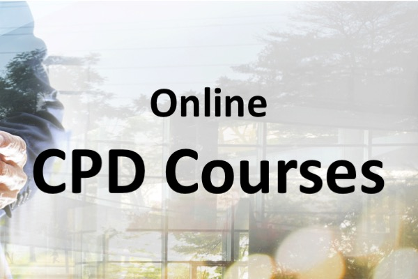 Online CPD Training with LearnEM
