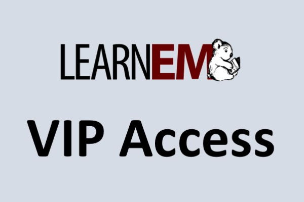 LearnEM VIP Access